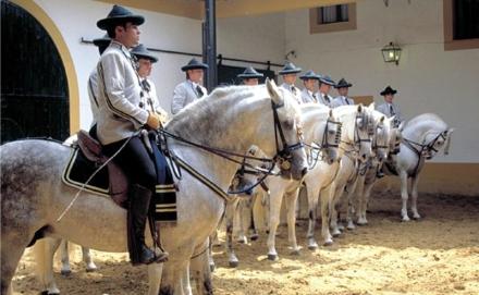Equestrian Art at Jerez de la Frontera